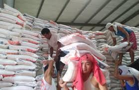 Produksi Beras Banyuasin Tetap Surplus Hingga Akhir Tahun | www.iannews.id